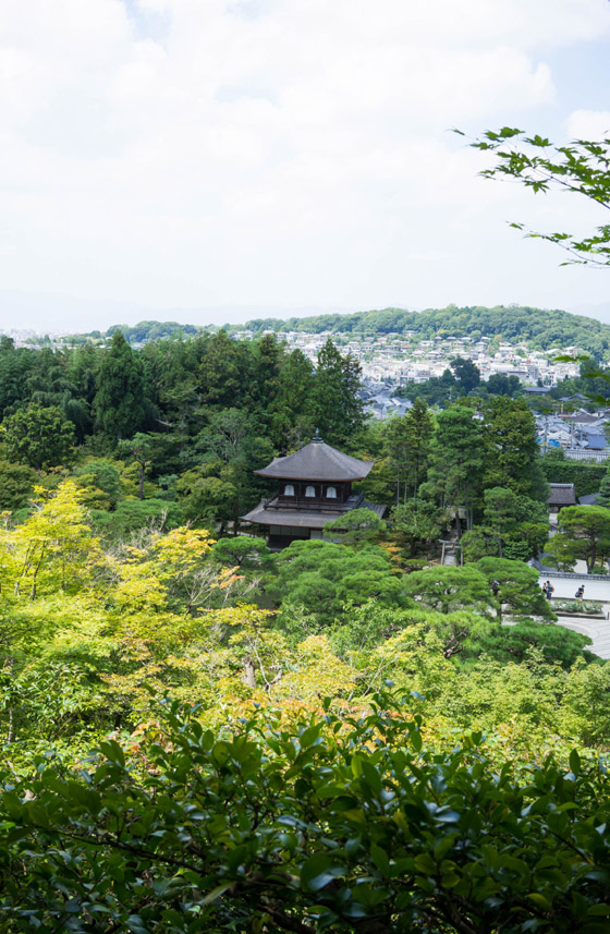kyoto201508_04.jpg