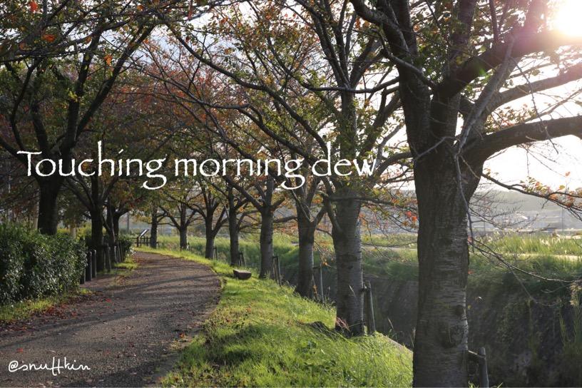 morningwalk0113.jpg