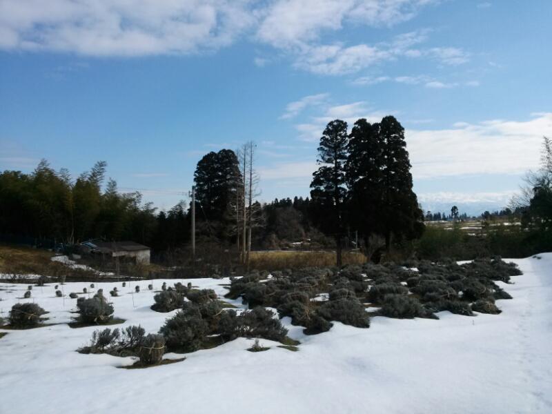 冬の土木工事