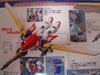 2010072916_mg_xxxg01w_birdmode