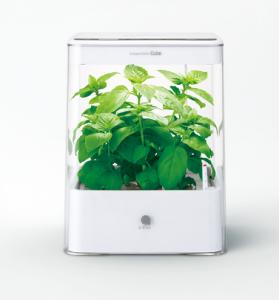 2015 0221 水耕栽培器